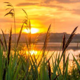 Toivottomuutta ja toivon kipinöitä työyhteisössä